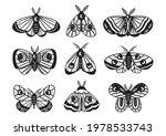set of isolated black magic...   Shutterstock .eps vector #1978533743