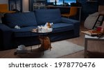 Small photo of Beer bottles and pizza on table in messy living room with nobody in, leftover thrown on floor. Unorganized house apartment of alone woman with sever depresion having trash, rubbish