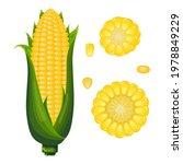 vector corn in cartoon style.... | Shutterstock .eps vector #1978849229