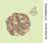 background with maitake  piece... | Shutterstock .eps vector #1978880960