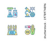 genetic modification rgb color... | Shutterstock .eps vector #1978974896