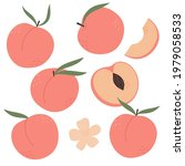 set of peaches with leaves....   Shutterstock .eps vector #1979058533