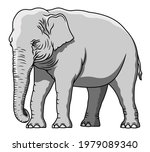 vector indian grey elephant... | Shutterstock .eps vector #1979089340