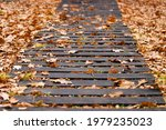 An Old Damaged Wooden Path In A ...