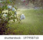 to water a garden | Shutterstock . vector #197958710