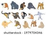 cartoon monkey set vector... | Shutterstock .eps vector #1979704346