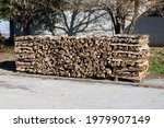 Stacked Dry Firewood Left On...
