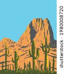 Saguaro Cactus With Beehive...