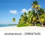 beautiful tall palm trees and... | Shutterstock . vector #198067640