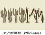 cactus and succulent hand drawn ... | Shutterstock .eps vector #1980723386