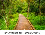 Boardwalk Path Along The...