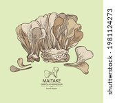 background with maitake  piece...   Shutterstock .eps vector #1981124273