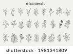 floral elements for design ... | Shutterstock .eps vector #1981341809