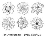 a set of beautiful monochrome... | Shutterstock .eps vector #1981685423