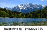2 Ducks Relaxing In Alpine Lake