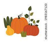 ripe pumpkin vegetable as...   Shutterstock .eps vector #1983167120