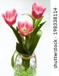 bouquet of three pink tulips in ... | Shutterstock . vector #198338114