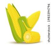 cartoon corn. golden maize... | Shutterstock .eps vector #1983394796