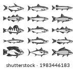 vector fish illustrations...   Shutterstock .eps vector #1983446183