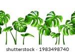 vector horizontal tropical...   Shutterstock .eps vector #1983498740