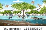 mangrove forest landscape scene ... | Shutterstock .eps vector #1983853829