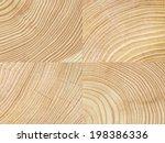 Cut Tree Log Wood Texture...