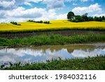 picturesque rural landscape...   Shutterstock . vector #1984032116