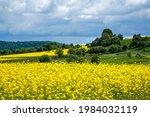 picturesque rural landscape...   Shutterstock . vector #1984032119