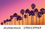 Summer Sunset Beach. Palm Tree...