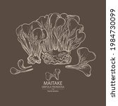 background with maitake  piece...   Shutterstock .eps vector #1984730099