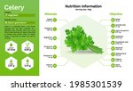 celery and its nutritional...   Shutterstock .eps vector #1985301539
