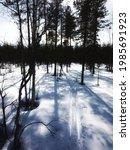 backlit trees and ski tracks in ... | Shutterstock . vector #1985691923