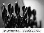 monochrome macro shot of a... | Shutterstock . vector #1985692730