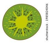 kiwi fruit slice  natural... | Shutterstock .eps vector #1985824046