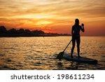 stunning silhouette of a... | Shutterstock . vector #198611234