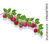 plum branch with leaves and...   Shutterstock .eps vector #1986387893
