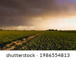 Stormy Sky Due To Rain In The...