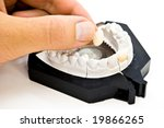 plaster dental mold with hand and sample tooth - stock photo