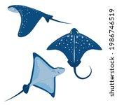 set of marine vector... | Shutterstock .eps vector #1986746519
