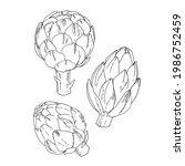artichoke. vector food icons of ...   Shutterstock .eps vector #1986752459