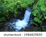 Streaming Water In Small...