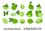 green lime fruits isolated on...   Shutterstock .eps vector #1986968159