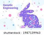 dna of rabbit genetically... | Shutterstock .eps vector #1987139963