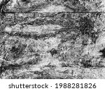 distress old cracked concrete...   Shutterstock .eps vector #1988281826