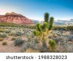 Beautiful Landscape Seen From...