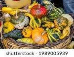 Display Of Colorful Pumpkins...