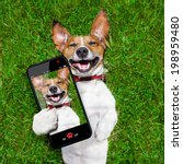 dog taking a selfie  and... | Shutterstock . vector #198959480