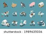veterinary clinic mri xray... | Shutterstock .eps vector #1989635036