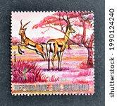 Small photo of Burundi - circa 1971 : Cancelled postage stamp printed by Burundi, that shows Grant's Gazelle, circa 1971.