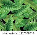 vector tropical leaves... | Shutterstock .eps vector #1990508810